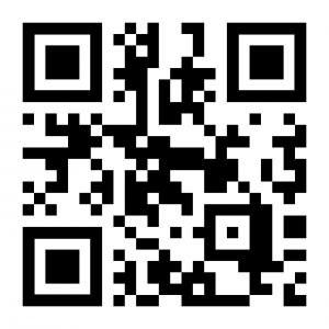 WEBSITE SPEED TEST QR CODE